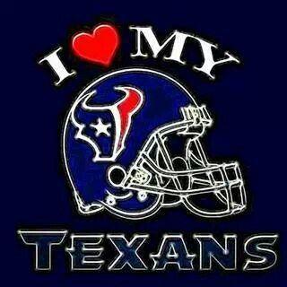 Houston Texan Fan