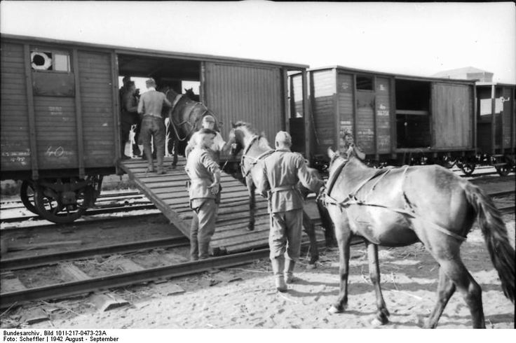 The German Army used horses extensively during World War Two. The 6th Army, engaged in urban warfare in Stalingrad, was unable to feed or graze their horses and sent them to the rear. When the Soviets enveloped the 6th Army in November 1942, the German troops were cut off from their horse transport and would have been unable to move their artillery had they tried to evacuate the city.