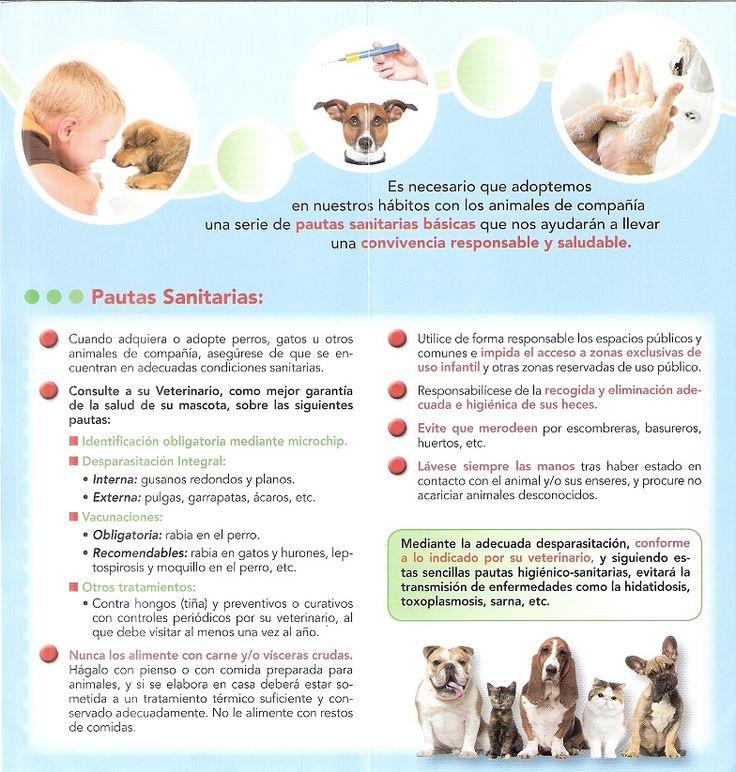 Pautas Sanitarias: Salud Pública y tenencia responsable de perros y gatos.