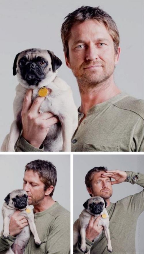 Gerard Butler and his pug, Lolita.This Man, Pets And Celebrities, Celebrities And Pets, Favorite Things, Hot Guys And Puppies, Men And Dogs, Gerard Butler, Celebrity Dogs, Celebrity Pugs