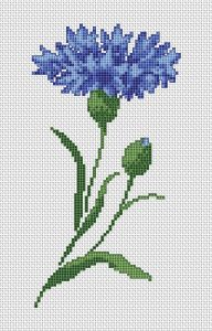 Cornflower • free cross stitch pattern for this and other flowers