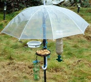 """well this is fun ~ keeps the birds dry while the plant hanger """"tree"""" provides different feeding stations"""