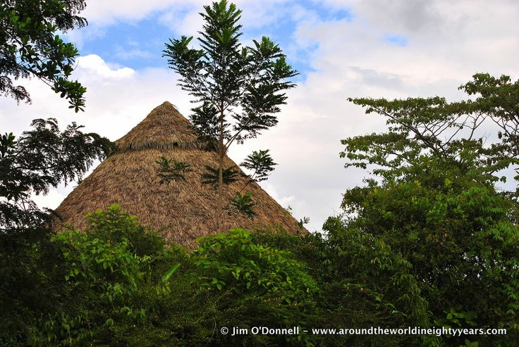 A City in the Jungle - El Guayabo National Monument
