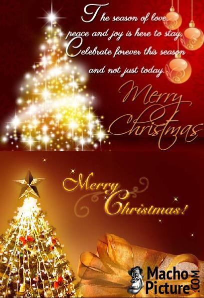 Best 25+ Christmas greetings message ideas on Pinterest Merry - christmas greetings sample