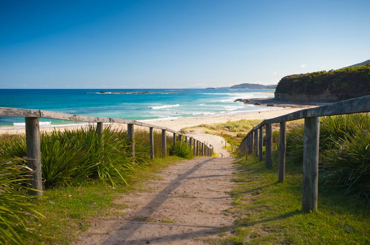 Australia is without a doubt one of the best places in the world to travel. With Australia having the highest rates of pet ownership in the world there is no need to leave your fury little ...