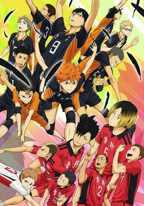 Haikyuu Karasuno and Nekoma