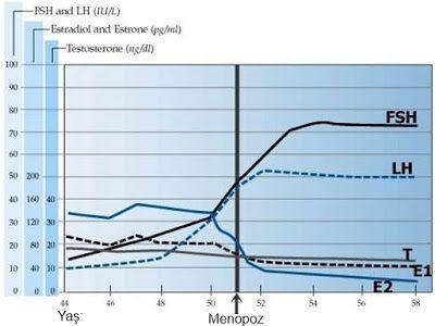 MENOPOZDA HORMON TESTLERİ VE DEĞERLERİ | Jinekoloji Gebelik Hesaplama
