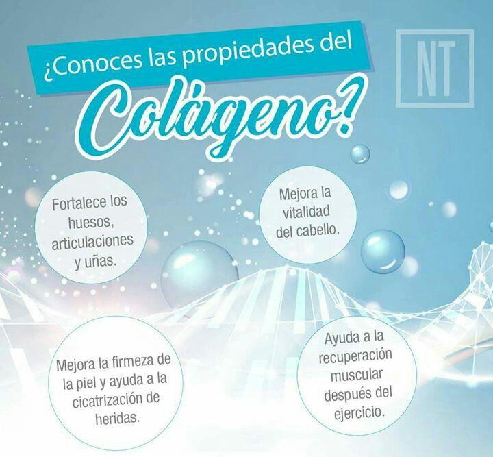 Propiedades del colágeno