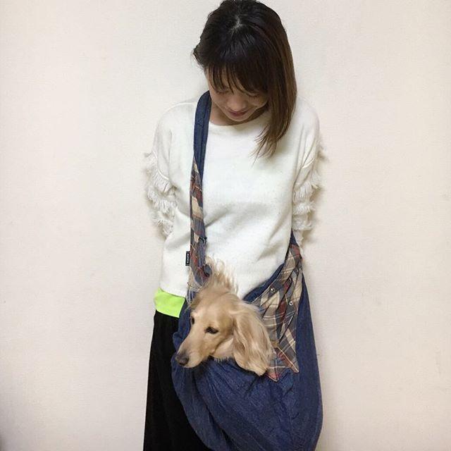 . 今日もここ❤︎ . #最近のお気に入り #スリング #ダックス #ダックスフンド #わんこ #わんちゃん #愛犬 #dog #dogstagram #love #lovedog #dachshund #dachs #dachshundgram #dachshundlove #photo #kyounodachs #todayswanko #사진 #귀여워. #개 #all_dog_japan #甘えん坊 #天然娘