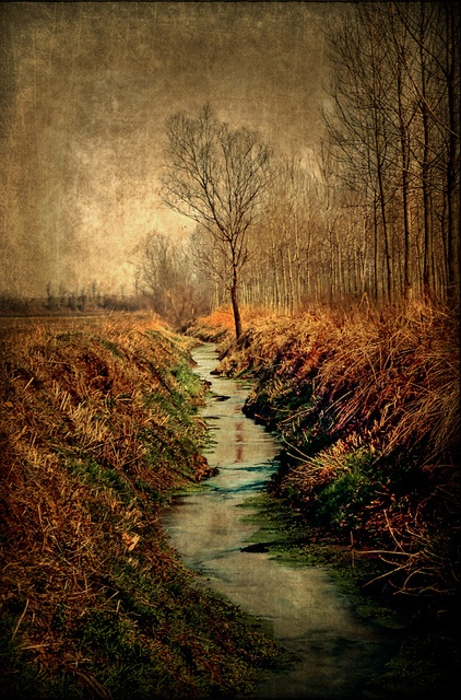 Along the canal by A look through lens, via Flickr