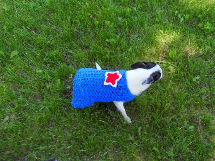 17 Best images about Crochet - Pets on Pinterest Dog ...