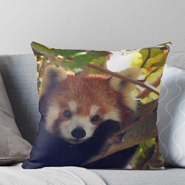 Red Panda Throw Pillow By Kirstybush Panda Pillow Red Panda Throw Pillows