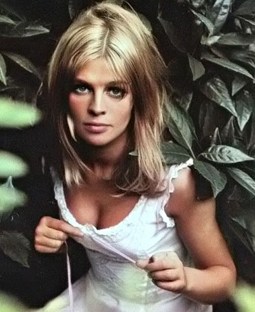 walkerlive:    Julie Christie  My version…