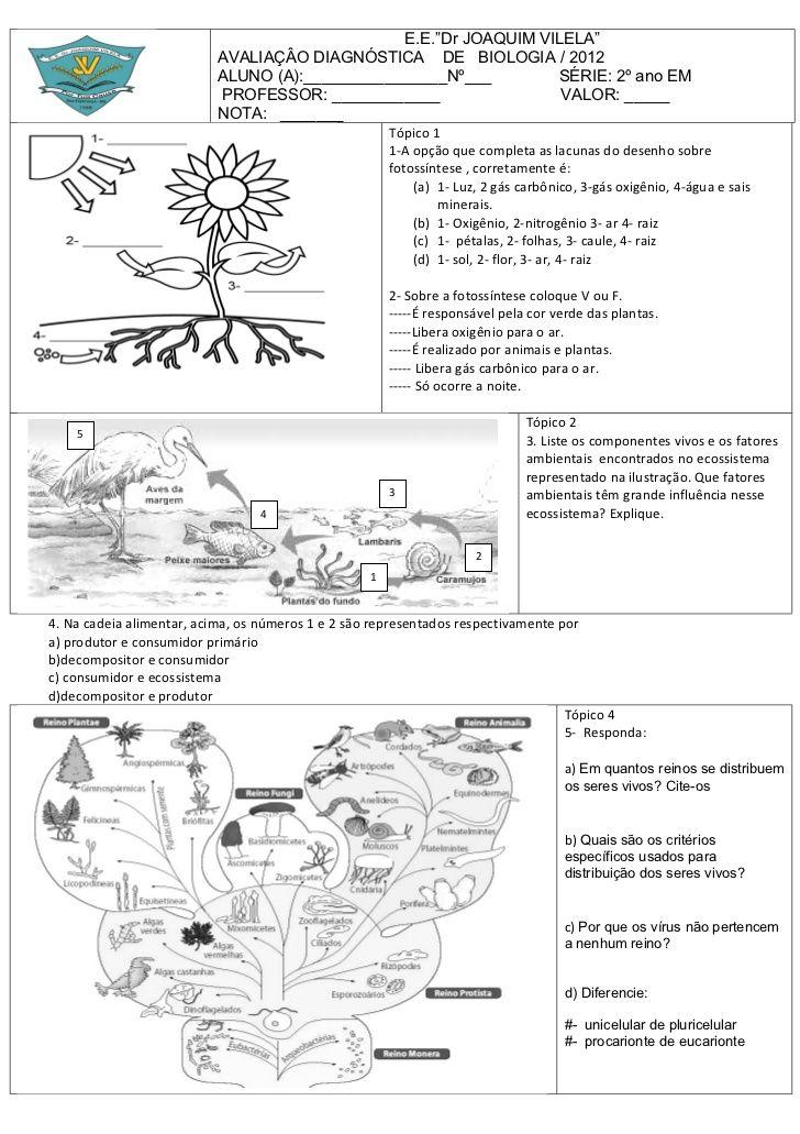 Imagem Relacionada Biologia Ciencias Ciencias Naturais