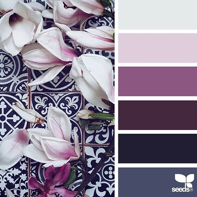 today's inspiration image for { flora hues } is by @_ewabakrac ... thank you, Ewa, for another inspiring #SeedsColor image share!