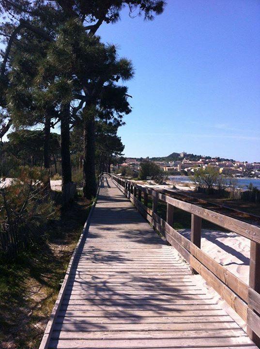 Region de Calvi - Promenade de la Pinède de Calvi
