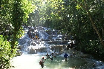 I climbed 600 ft of Dunns River Falls in Jamaica on April 14!  So exhilarating & intense!