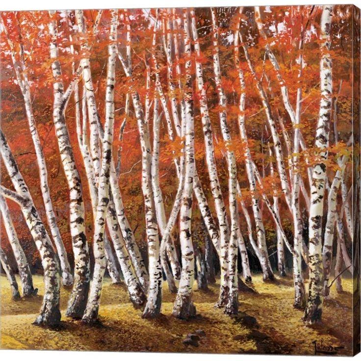 Adriano Galasso 'Bosco di Betulle I' Canvas Art