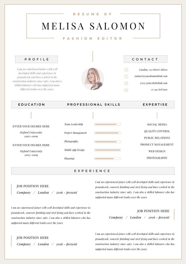 Professional Resume Template Clean Modern Resume Template One
