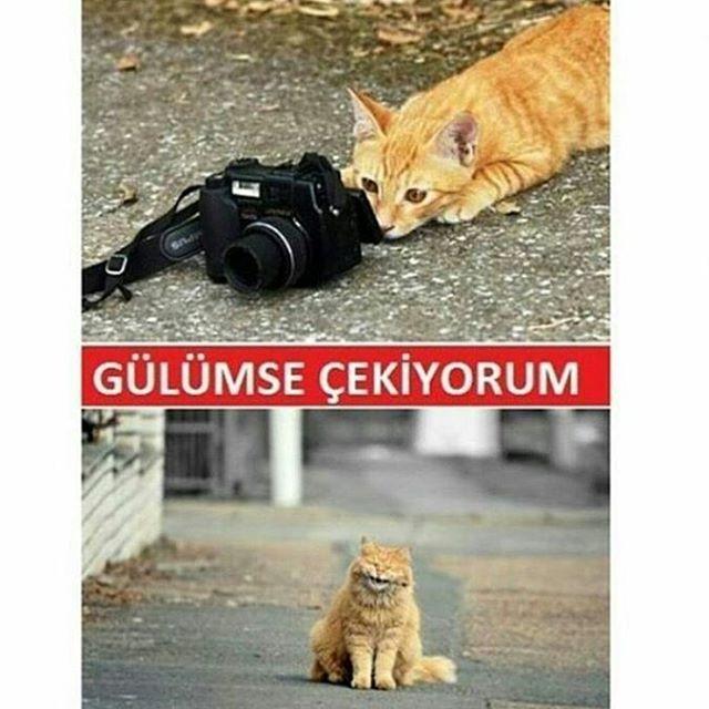 Besim Kocak'in (@kocakbesim) Instagram fotoğraflarını ve videolarını gör