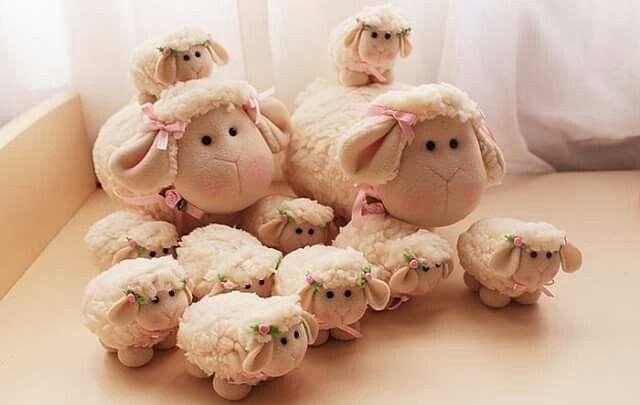 Ovelhas                                                       …