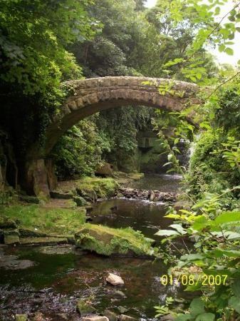 Newcastle - Jesmond Dene Park