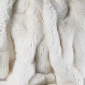1000 id es sur le th me renard blanc sur pinterest. Black Bedroom Furniture Sets. Home Design Ideas