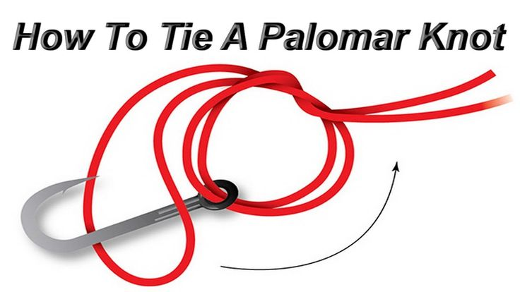 How to tie a palomar knot is a short video and will show you how to tie the palomar knot in simple and quick way. The Palomar Knot is a simple knot for attaching a fishing line to a fishing hook, or a fly to a leader or tippet. It is regarded as one of the strongest and most reliable fishing knots. It is recommended for use with braided lines. With a little practice the Palomar is a knot that can be tied in the dark. This is also the best knot to use with braided fishing line.