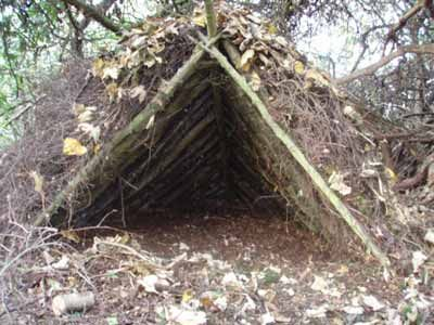 6 Wilderness Survival Shelters