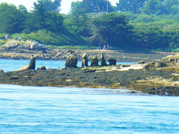 """Cromlech de l'îlot de """"Er Lanic"""""""