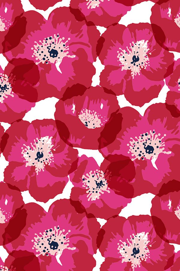 Big Poppies - Red by jillbyers - Hot pink and mauve poppies on fabric, wallpaper, and gift wrap. Bold pink floral pattern in bright pink shades.