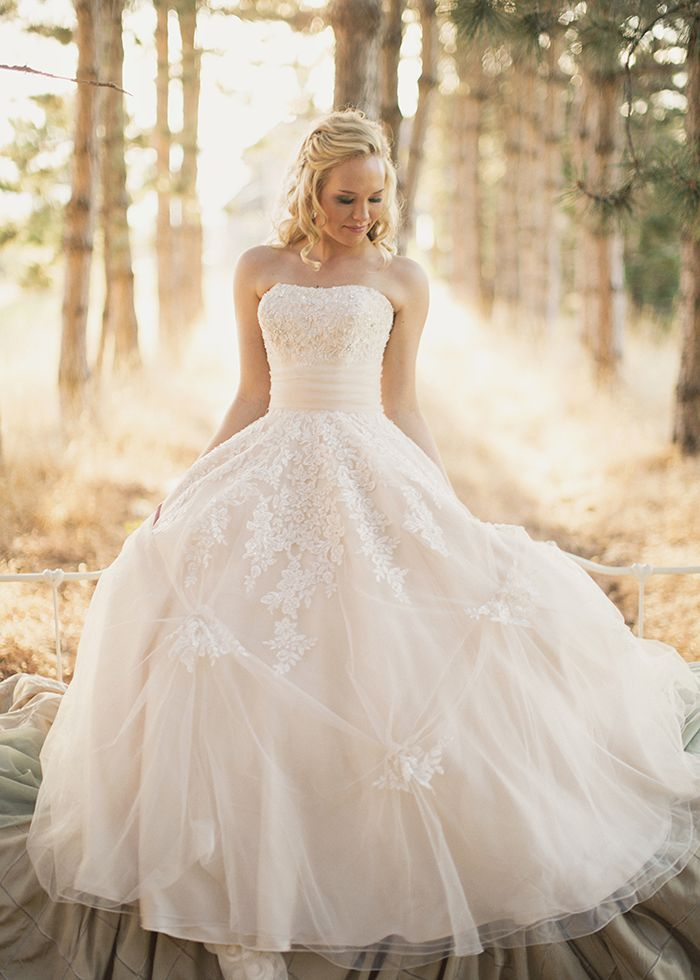 vintage lace blush colored wedding dress; not sure I love it as a ballgown but I love the top and the detailing