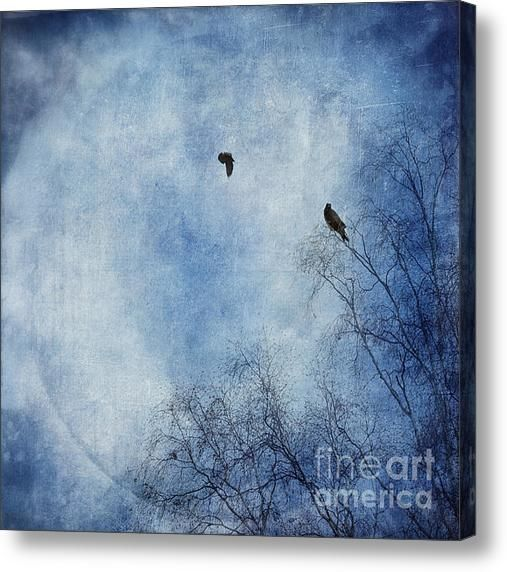 Come Fly With Me Acrylic Print By Priska Wettstein