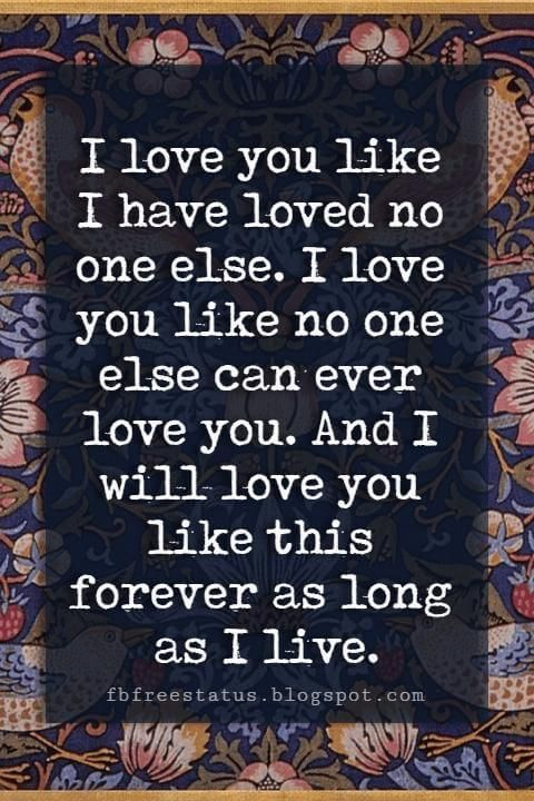 I love you like I have loved no one else. I love you like no one else can ever love you. And I will love you like this forever as long as I live.