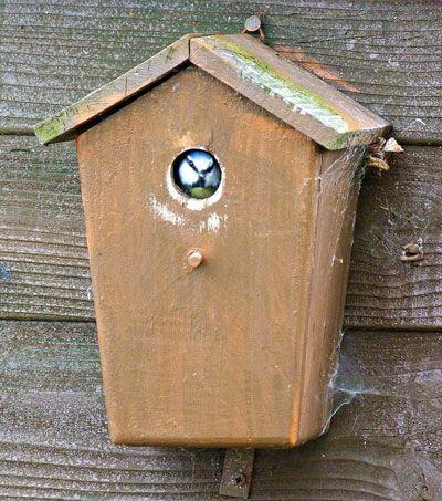 les 71 meilleures images du tableau nichoirs pour oiseaux du jardin birdhouse nistkasten. Black Bedroom Furniture Sets. Home Design Ideas