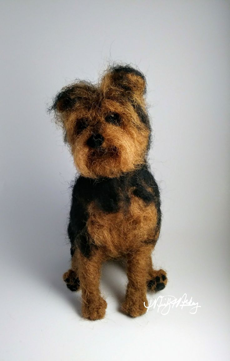 47 best pets images on pinterest fluffy pets adorable animals this is a model for commission pet portrait yorkie can make in any color nvjuhfo Images