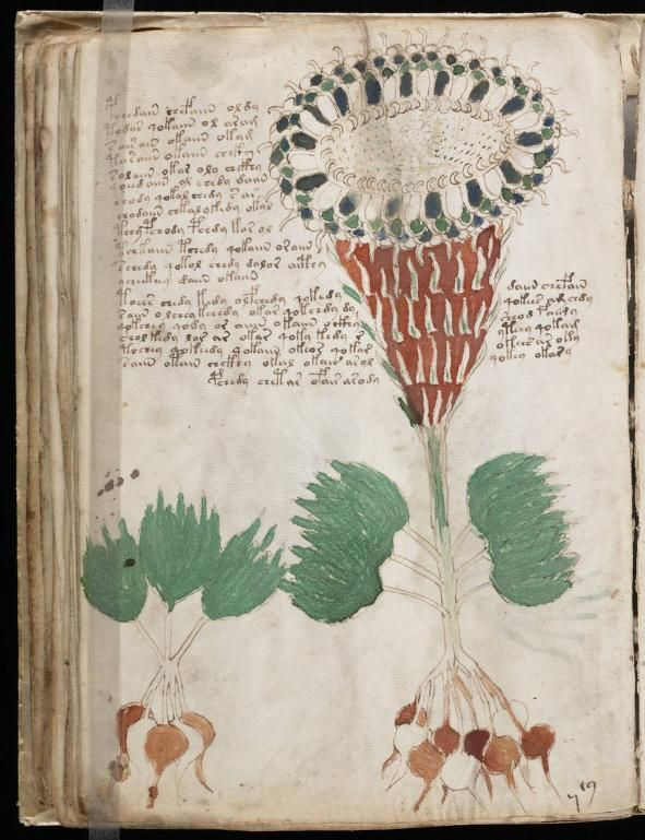 A classic Criptical one: The Voynich Manuscript. In 2009, University of Arizona researchers performed C14 dating on the manuscript's vellum, which they assert (with 95% confidence) was made between 1404 and 1438.[2][17][18] In addition, the McCrone Research Institute in Chicago found that the paints in the manuscript were of materials to be expected from that period of European history. More: http://en.wikipedia.org/wiki/Voynich_manuscript