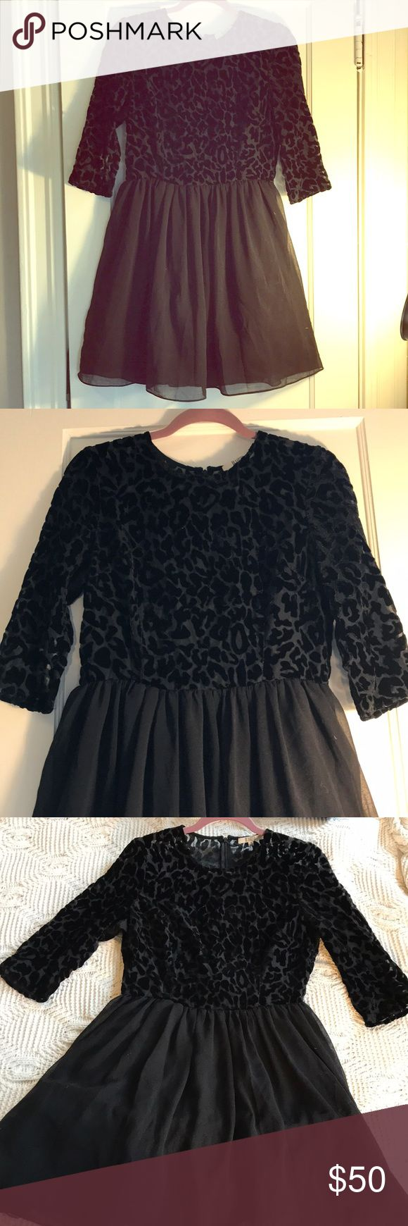 BB Dakota black leopard and tulle dress! Adorable black B.B. Dakota dress, with a velvet leopard pattern on chest and 3/4 sleeves, and a tulle skirt. Worn once, with no signs of wear or flaws. This dress is adorable, the tulle keeps the skirt nice and full, so it really can be dressed up for formal events, or down with booties and a leather jacket! Perfect for Valentine's Day! Submit an offer, and I'll work with you to make this dress your new closet go-to! BB Dakota Dresses Long Sleeve