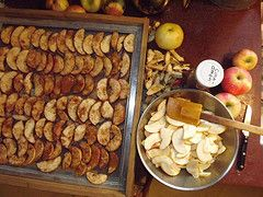 dehydrated apples http://thesurvivalmom.com/simple-secrets-of-food-dehydration/