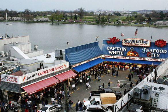 Maine Avenue Fish Market In 2020 Washington Dc Travel Living In Washington Dc Dc Travel