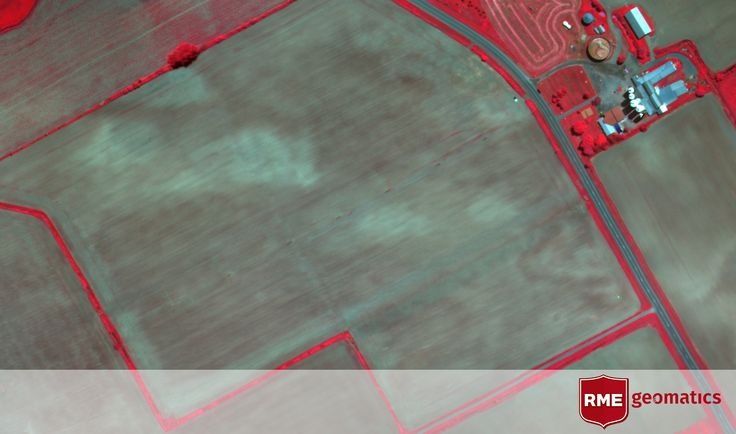 Colour Infrared Mosaic (CIR) of a corn field near St Isidore, Ontario. The brighter the red the more vigorous the vegetation.  Vegetation and tree species are often easier to distinguish on CIR imagery