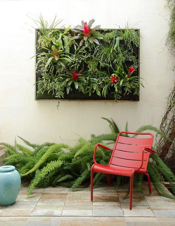 Newsletters - Flora Grubb Gardens: http://www.floragrubb.com/newsletterArchive/index.php?id=54#