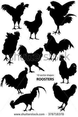 Стоковые фотографии и изображения Rooster   Shutterstock