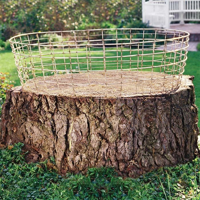 Tree stump and wire basket garden pinterest gardens for Tree trunk slice ideas