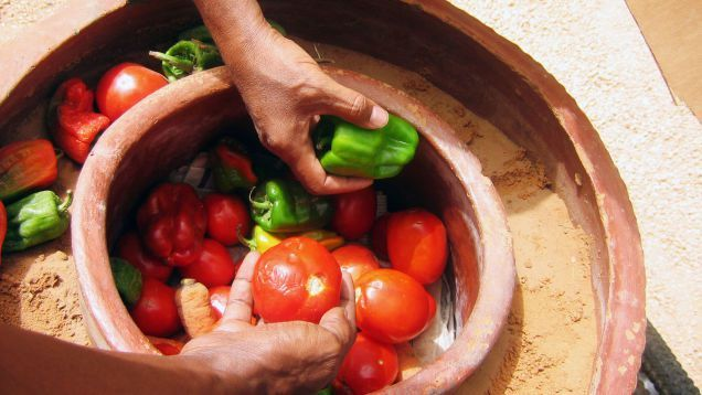 Survival guide - Refrigerate food without electrical power