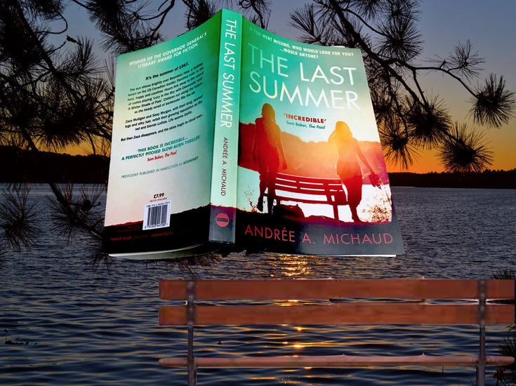 "Slow burning mystery set on the border of MAINE and QUEBEC ""The Last Summer"" by Andrée A Michaud"