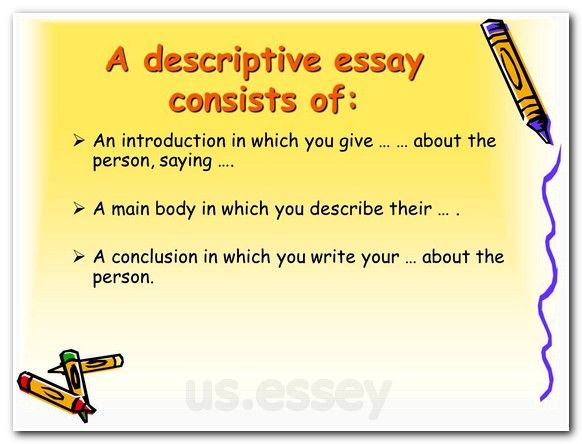 Service essay writing structure tips