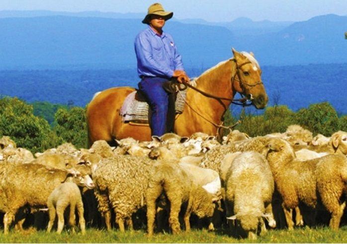 Experience an authentic Australian Farm, Bush and Rural life at Tobruk Sheep Station.