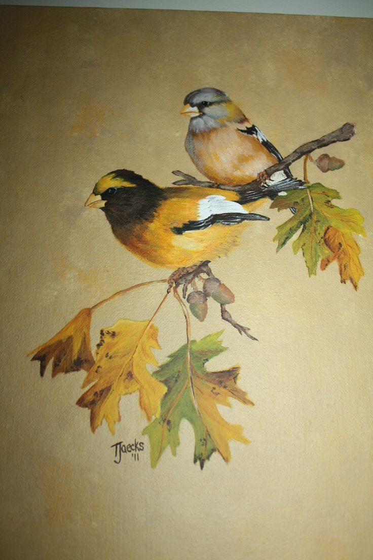Evening Grosbeak Pair Pattern From Painting Songbirds
