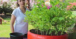 14 ideas para reciclar botellas en el jardín | Plantas